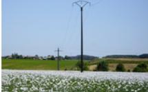 Votre électricité est-elle de bonne qualité ?