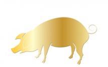 Déclaration obligatoire de porcs ou de sangliers